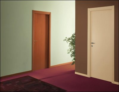 Простые, классические двери, идеальны для офиса
