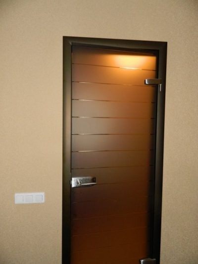 Металлическая дверная коробка со стеклянным полотном темного цвета в интерьере