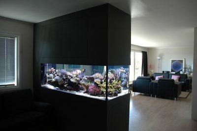 Стильный вариант со встроенным аквариумом
